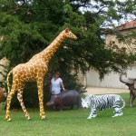 animation-salons-animaux-concept-safari-show