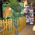 animation-salons-decoration-concept-safari-show