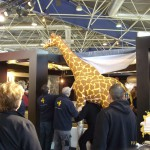animation-salons-girafe-concept-safari-show