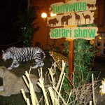 animation-salons-lionne-concept-safari-show