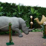 animation-salons-rhinoceros-dromadaire-concept-safari-show