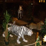 animation-salons-tigre-blanc-concept-safari-show
