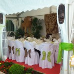 decoration-concept-safari-show-rgevent